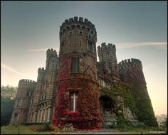 Abandoned castle, Chateau De La Foret, or the Castle of the forest in Belgium! Why would anyone abandon such a gorgeous place and just let it decay and fall down? What a beautiful place! Abandoned Castles, Abandoned Mansions, Abandoned Places, Haunted Places, Beautiful Castles, Beautiful Buildings, Beautiful Places, Chateau Medieval, Medieval Castle