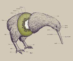 porque siempre que pensamos en este animal pensamos en la fruta