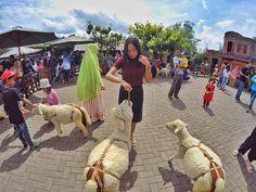 aaaaa.. anak pinter • • • #PesonaIndonesia #IniIndonesiaku #IniBandungku #travel #traveling #adventure #vacation #instatravel #instagood #trip #holiday #holidays #photooftheday #fun #tourism #tourist #instatraveling #mytravelgram #travelgram #igtravel #visitbandung #bandungexplore #bandung #explorebandung #bandungjuara by friss.k. instagood #travelgram #bandung #mytravelgram #igtravel #bandungexplore #tourist #holidays #travel #traveling #inibandungku #pesonaindonesia #fun #vacation…