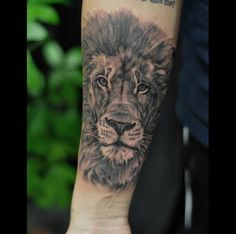 Chronic Ink Tattoo, Toronto Tattoo                          -Lion tattoo in progress by Marilyn. More background to come.