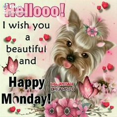 Happy Monday Images, Happy Monday Quotes, Good Morning Happy Monday, Monday Morning Quotes, Cute Good Morning Quotes, Good Morning Inspirational Quotes, Good Morning Good Night, Good Morning Quotes Friendship, Good Morning Thursday Images