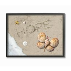 """The Stupell Home Decor Collection 11 in. x 14 in. """"Hope With Starfish Sand Dollar and Seashell Butterfly"""" by Alan Giana & Company Framed Wall Art - The Home Depot Seashell Art, Seashell Crafts, Crafts With Seashells, Beach Rocks Crafts, Seashell Jewelry, Frames On Wall, Framed Wall Art, Seashell Projects, Nautical Wall Decor"""