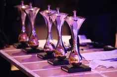 The Awards Polished and ready for their new owners!