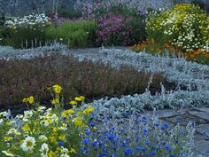 Gertrude Jekyll's Colours and Planting by cycle.nut66, via Flickr