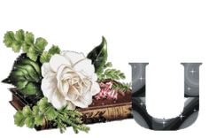 Animated Alphabet Blooms Flowers Page Thirty Five