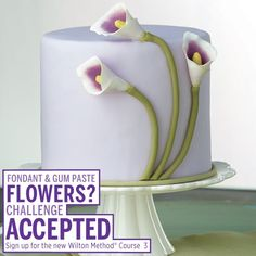 Course 3 - Gum Paste and Fondant - Space is Limited - 4 weeks long  https://www.facebook.com/plumforest Subscribe to upcoming events. https://instagram.com/plum_forest https://twitter.com/PlumForestInfo https://www.pinterest.com/plumforest https://www.etsy.com/shop/PlumForestPantry