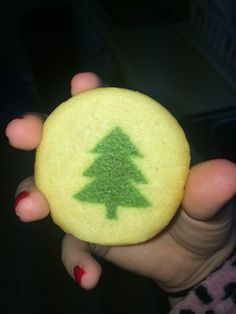 13 months cookies for Santa