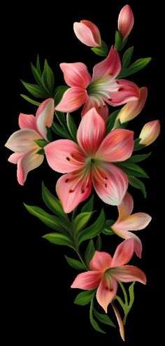 Beautiful Flowers Wallpapers, Beautiful Rose Flowers, Amazing Flowers, Beautiful Flower Drawings, Lily Painting, Acrylic Painting Flowers, Flower Paintings, Flower Backgrounds, Wallpaper Backgrounds