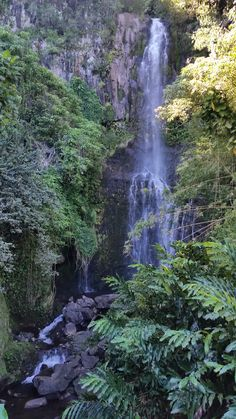 Hawaii travel tips. best waterfalls in Hawaii. waterfalls maui things to do road to hana stops. places to visit. Outdoor adventure t Hawaii Waterfalls, Hawaii Hikes, Maui Hawaii, Maui Travel, Hawaii Vacation, Vacation Ideas, Travel Tips, Travel Destinations, Beautiful Places To Visit