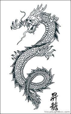Wallpapers , Images & Photos pour dessin dragon chinois tatouage © w12.fr