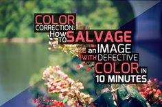 Color Correction: How to Salvage An Image With Defective Color in 10 Minutes