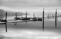 - At the docks vii -