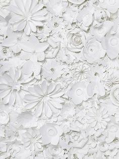 白色的剪纸花朵