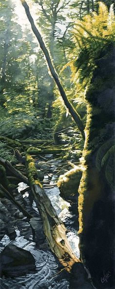 """""""Stream in Shimmering Sun"""" """"As sunshine glints and glances off twig, leaf and stone, the little forest valley is awash in light. At its feet an eager stream rushes down in full flight towards Tenedos Bay and out to sea. Watercolor Landscape, Watercolour Painting, Landscape Art, Landscape Paintings, Watercolors, Sun Painting, Watercolor Trees, Guache, Paintings I Love"""
