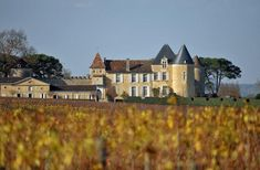 Thieves have made off with worth of Château d'Yquem after breaking into a warehouse at the renowned Sauternes estate on Sunday night. Chateau Bordeaux, Bordeaux Wine, Bordeaux France, Chateau Latour, Wine Chateau, Rare Wine, Wine News, St Emilion, Wine Sale