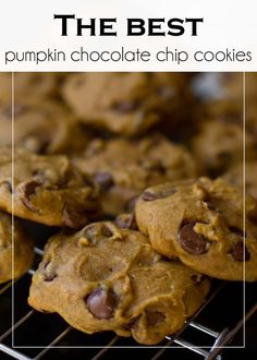 The BEST pumpkin chocolate chip cookies. I made pumpkin chocolate chip cookies before. Köstliche Desserts, Delicious Desserts, Dessert Recipes, Yummy Food, Dessert Healthy, Cupcakes, Pumpkin Recipes, Cookie Recipes, Yummy Treats