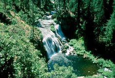 Middle McCloud River Falls, Shasta CA   © Marsha K. Russell