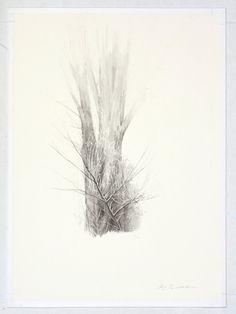 Shigeki Tomura : Mizusawa, Autumn at Davidson Galleries