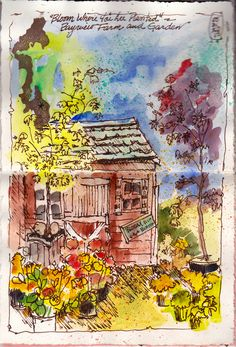 """Sketched with the Whidbey Island Sketchers yesterday at the Bayview Farm and Garden Center. This shed would have been my subject even if it had NOT had the sign on it that said """"Bloom Where You are Planted"""", my personal favorite motto."""