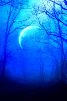 @PinFantasy - Blue Moon   #berryblue ~~ For more:  - ✯ http://www.pinterest.com/PinFantasy/color-~-azul-blue/