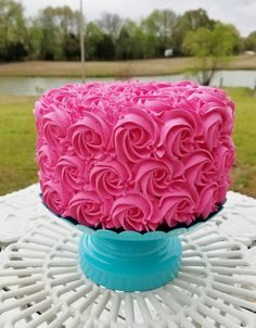 Hot Pink Rosette Fake Cake Photo Prop or Birthday Party Decorations 25th Birthday Cakes, 90th Birthday Parties, Birthday Party Decorations, Birthday Ideas, Pink Rosette Cake, Hot Pink Cakes, Pink Princess Cakes, Rose Icing, Fake Cake