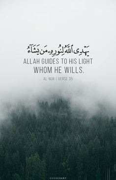 Allah guides to his light whom he wills. Quran Quotes Love, Quran Quotes Inspirational, Beautiful Islamic Quotes, Arabic Quotes, Hindi Quotes, Qoutes, Hadith Quotes, Muslim Quotes, Religious Quotes