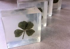 Lucky Clover Soap - Crafted Herbals