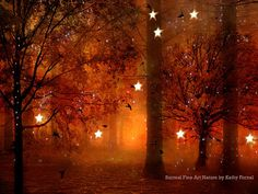 """Nature Photography, Surreal Haunting Twinkling Stars Lights Autumn Fall Woodlands, Orange Sepia Brown Fine Art Nature Photo 9"""" x 12"""" on Etsy, $30.00"""