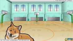 A dog with golden brown and cream colored coat, fluffy tail, erected ears, resting on the floor looking adorable and kind. Large indoor basketball court with wood floors, blue walls and large windows. There are three baskets and lines marked on the floor. Illini Basketball, Jazz Basketball, Basketball Finals, Indoor Basketball Court, Basketball Equipment, Basketball Floor, Best Basketball Shoes, Basketball Leagues, Basketball Uniforms