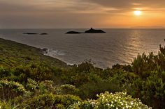 Les îles Finocchiarola au large du cap CorseDéjà classées en réserve naturelle, les îles Finocchiarola, au nord de l'île, seront l'un des bijoux terrestres du futur parc marin du cap Corse.