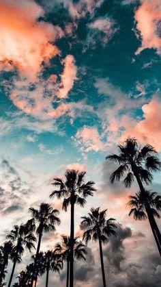 Le rêve de californie se tient toujours dans la tête. C'est difficile, mai... - #Fondd'écraniphone #Fondd'écrantéléphone #Fondecrancitation #Fondecrandisney #Fondecrantumblr #Wallpapertéléphone