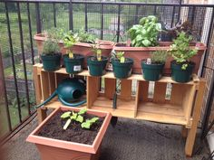 Balcony herb garden sculpture by Just Two Crafty Sisters Just