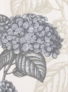 Ortensia Wallpaper Hydrangea print in charcoal and grey on off white background