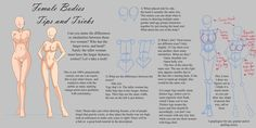 Female Bodies : Tips and Tricks by RachelFrasier on DeviantArt Female Eyes, Female Anime, Female Bodies, Drawing Legs, Body Drawing, Figure Drawing, Body Study, Manga Tutorial, Body Hacks