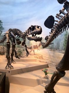 Twitter / Laelaps: Exit, pursued by Allosaurus ...