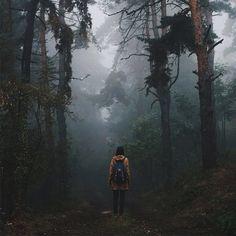 Resultado de imagen para bosques tumblr
