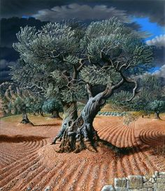 Miriam Escofet's Esoteric Paintings of Idyllic Worlds – Nature Beauties Giant Tree, Big Tree, Weird Trees, Tree Artwork, Unique Trees, Old Trees, Nature Tree, Olive Tree, Tree Of Life