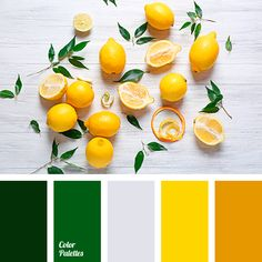 Shades Of Yellow Color Names For Your Inspiration – Going To Tehran Color Palette