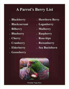 Acceptable berries