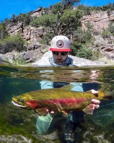 """8,397 Likes, 66 Comments - Lords Of The Fly (@flylords) on Instagram: """"""""I had heard about fly fishing from a number of friends over the years but never brought myself to…"""""""