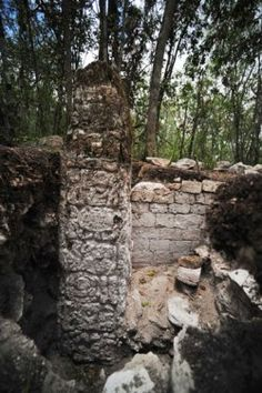 Vast Mayan City Discovered in Southeast Mexico Jungle. Archaeologists have discovered a previously unknown Mayan city in the southeastern state of Campeche, which for its vast extension and characteristics is believed to have been a seat of government some 1,400 years ago.