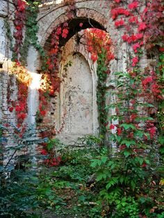 bluepueblo:  Garden of 40,000 Roses, Póstelek's Castle, Hungary photo via celeste