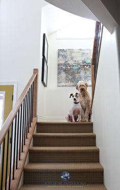 Paint Colour Ideas to Update Your Beige Tiles or Carpet - Kylie M Interiors Brown Carpet, Beige Carpet, Diy Carpet, Patterned Carpet, Yellow Carpet, Plush Carpet, Wall Carpet, Carpet Stairs, Carpet Tiles