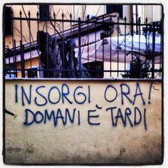 Roma (foto di @flaccidia)