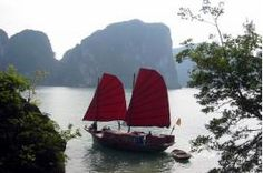 Junk boat cruise in Halong Bay, Vietnam Best Countries To Visit, Cool Places To Visit, Perfume Carolina Herrera, Pays Francophone, Best Holiday Destinations, Travel Destinations, Denmark Travel, Ha Long Bay, Egypt Travel