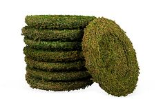 Green Moss Chargers.....garden party dinner plate accent.