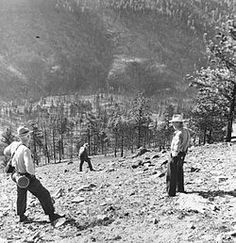 The Mann Gulch fire of August 5, 1949 was a wildfire in the Helena National Forest, Montana, United States, which claimed the lives of 13 firefighters including 12 smoke jumpers who were parachuted into the area to fight the fire, but were unable to control it. Nearly 1200 acres were burned.