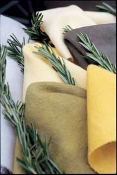 Dyeing Fabric with rosemary - including mordanting instructions