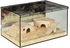 Small Pet Terrarium Kerry  http://www.ebay.co.uk/itm/Small-Pet-Terrarium-Kerry-/252277905879?hash=item3abcef59d7:g:troAAOSw5dNWtJLC