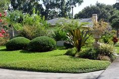 Low-Maintenance Lawn Alternatives: Ground Cover--If you want a yard that demands less time, money, and water, consider ground cover rather than a traditional lawn.